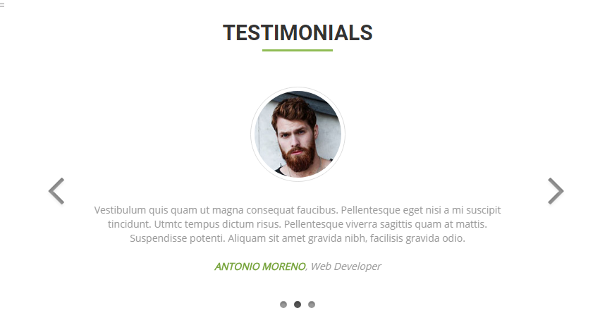 Bootstrap Testimonial Examples (Live Demos & Codes) - Tutorial Republic